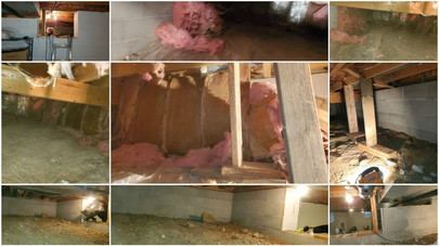 Crawl Space Cleanout