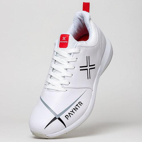Payntr V All White