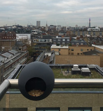 birdball_london_1.jpeg