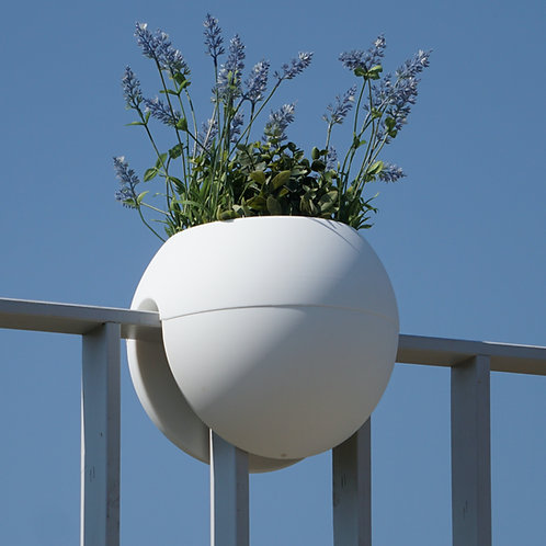 bloomball