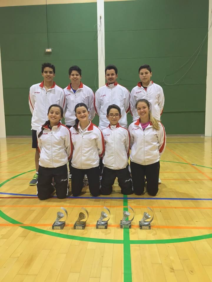 Provincial de Badminton