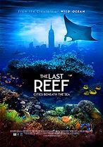last-reef.jpg