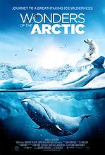 Wonders of the Artic.jpg