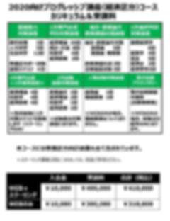 2020向けプログレッシブ.jpg