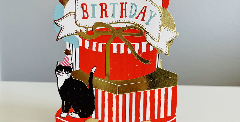 Party Cat 3D Pop-Up Birthday Card