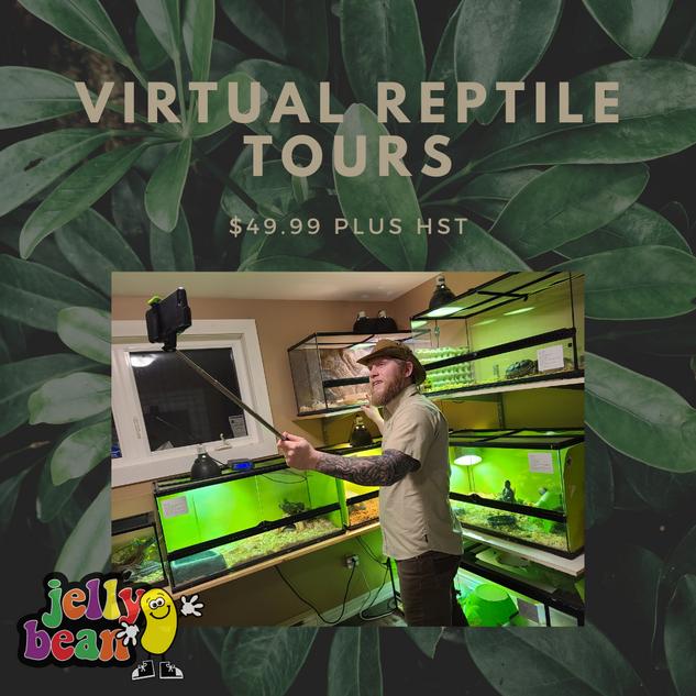 Virtual Reptile Tours