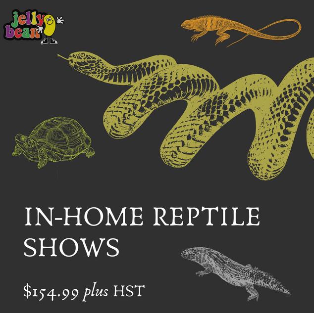 Reptile Shows