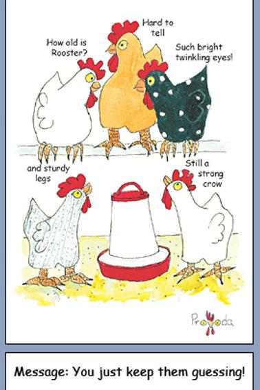 Chicken Rooster Birthday