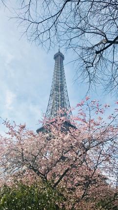 Study Abroad Europe 2018