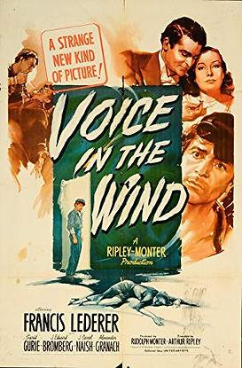 Voice in the Wind.jpg