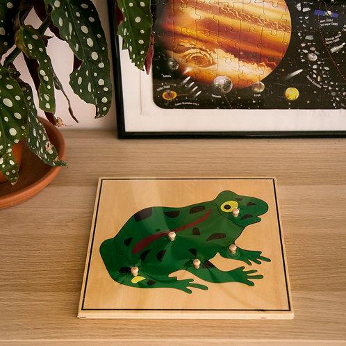 Puzzle de la grenouille