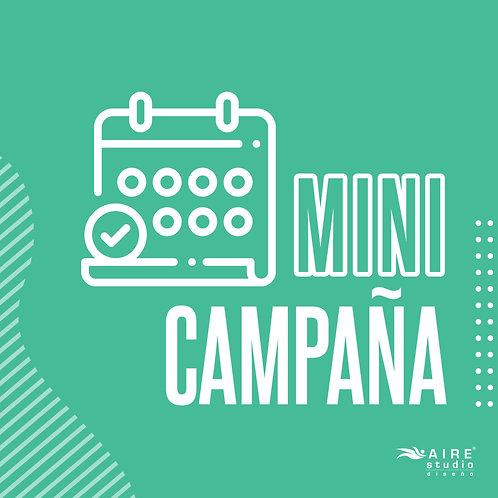 MiniCampaña Redes