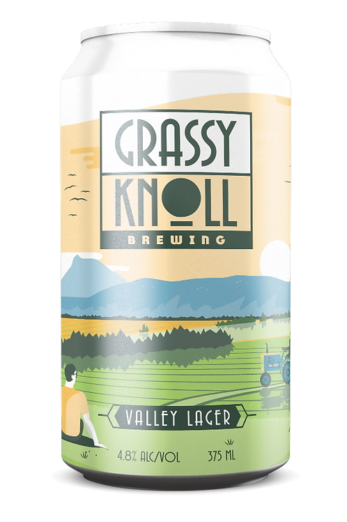 12 Pack Valley Lager