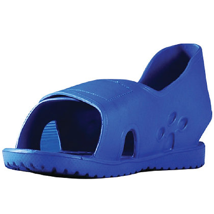 PrimeBlue™ Shoe