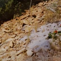 Ritual 1999.jpg