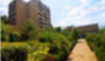 Сосновая роща | пансионат | Абхазия | Пицунда | цены | официальный сайт Арго