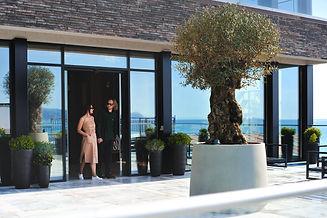 Чайка   отель   Сочи   центр   цены   официальный сайт Арго