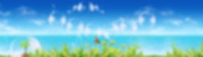 школьные туры   Сочи   весенние каникулы   Сочи парк   дети   поездка