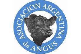 Logo Angus