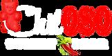ChilOSO Logo - White.png