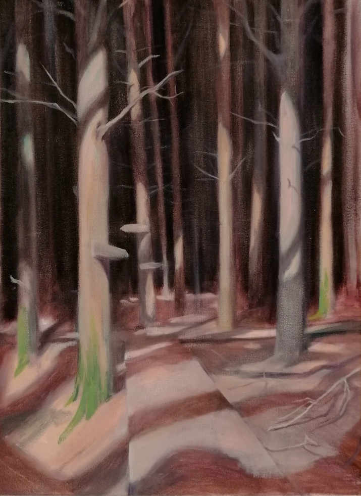 Pines, 2020, Oil on Canvas, 60cm x 45cm [Privately Owned]