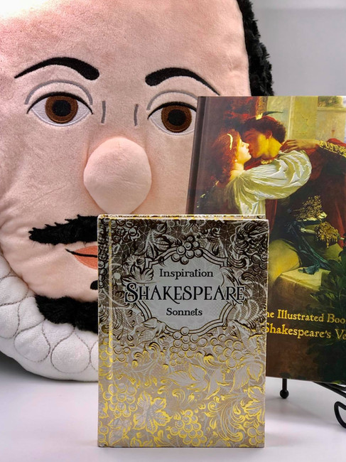 Shakespeare Pillow, Books and more!