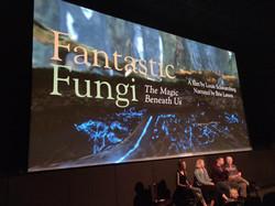Fantastic Fungus viewing