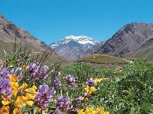 Provincia de Mendoza.jpg