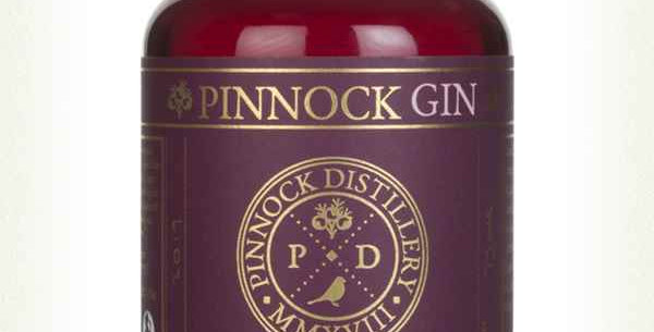Pinnock Sloe, Damson & Honey Gin (30% ABV) - 50cl