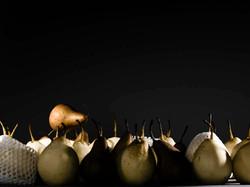 pear, portait, nathan lanham, photograph