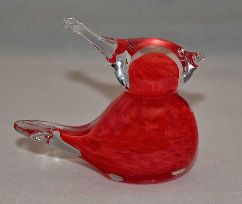 Medium Cardinal