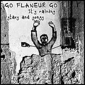 flaneur.jpg