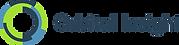 Orbital-Insight-logo-1l6wn01.png