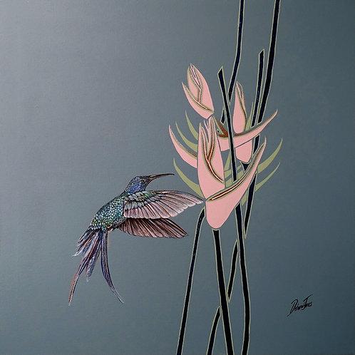 Hummingbird Blue