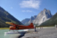 Beaver Plane