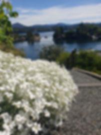 Hagearbeid - Bergen.jpg