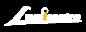 Logo lumicentro-01.png