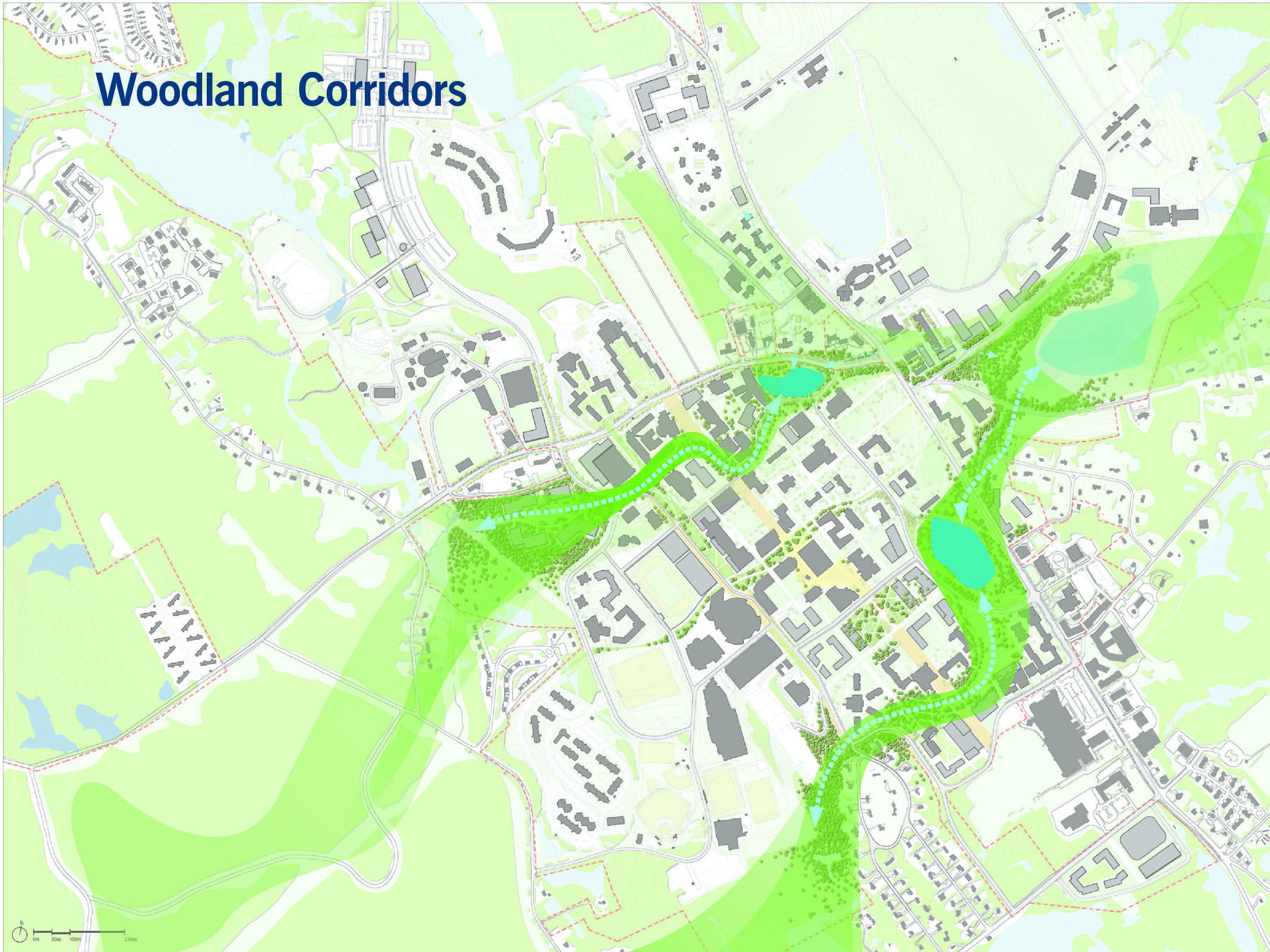 UConn Green Corridors