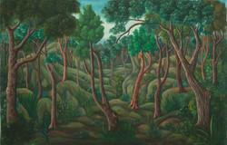 Latortue Francklin 24X36 #81-3-96 Canvas