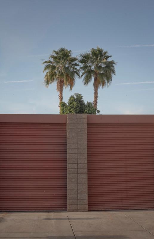 palmspring-3-2.jpg