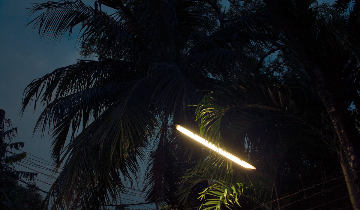 tropical night-2.jpg
