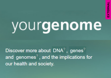 yourgenome