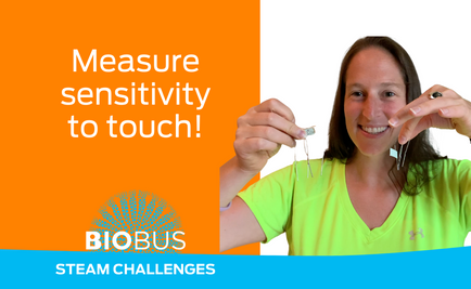 STEAM Challenge: Measure sensitivity to touch!