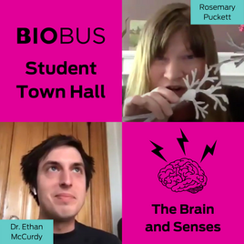 Student Town Hall: Brain and Senses