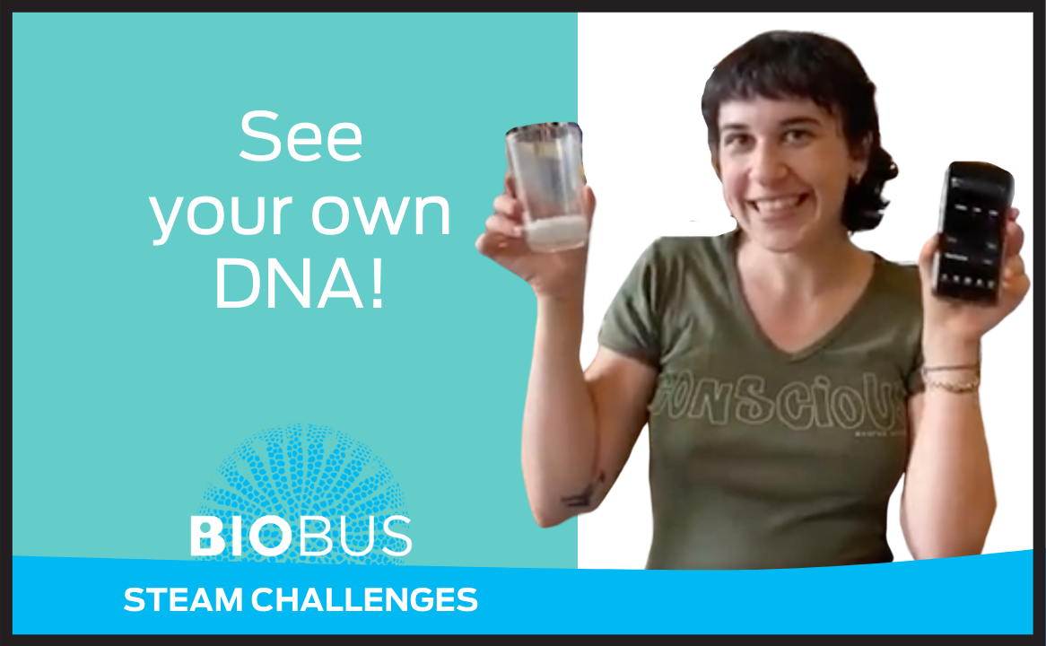 See your own DNA!