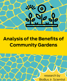 Intern Research: Analysis of the Benefits of Community Gardens