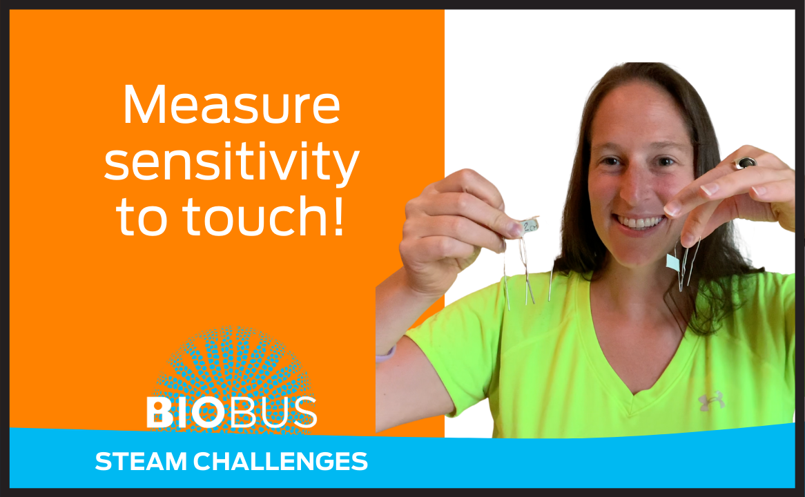 Measure sensitivity to touch!