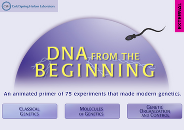 CSHL - DNA from the Beginning
