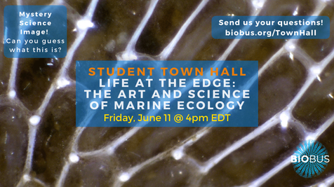 Student Town Hall: Life at the Edge: The Art and Science of Marine Ecology