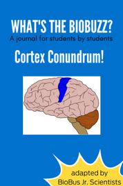 BioBuzz Article: Cortex Conundrum: How do animals feel?